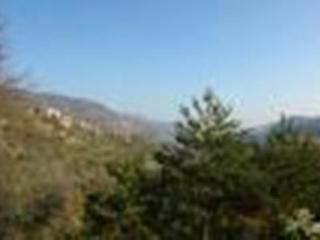 Appartamento mare - monti, nel verde degli ulivi, - Erli vacation rentals