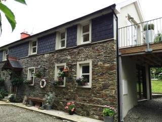 Perfect 3 bedroom House in Courtmacsherry - Courtmacsherry vacation rentals