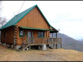 The View Cabin - Bryson City vacation rentals