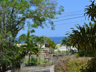 Coco Palm unit 1 - Rincon vacation rentals