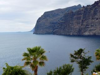 apartament with a beautifull view in los gigantes. - Los Gigantes vacation rentals