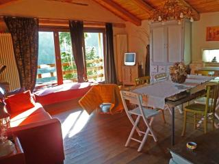 Cozy 1 bedroom Gite in Stroppo with Dishwasher - Stroppo vacation rentals