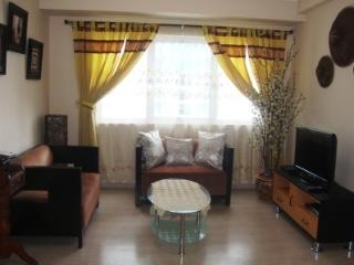 2B 2B Soma Next to SM Aura & Market with parking - Taguig City vacation rentals