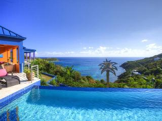 Bright Villa with Television and DVD Player - British Virgin Islands vacation rentals