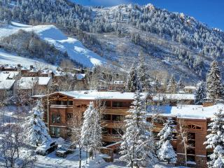 Fasching Haus 10, Sleeps 8 - Aspen vacation rentals