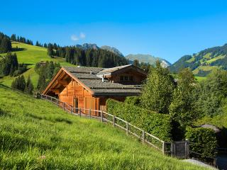 Comfortable Villa with Internet Access and Television - Saanen vacation rentals