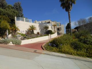 Beautiful Ocean View Apartment in N. Pacific Beach - Pacific Beach vacation rentals