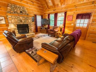 Tranquil Glen of Asheville-20 min drive to AVL - Asheville vacation rentals