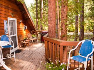 Comfortable Cabin with Deck and Internet Access - Greenwater vacation rentals