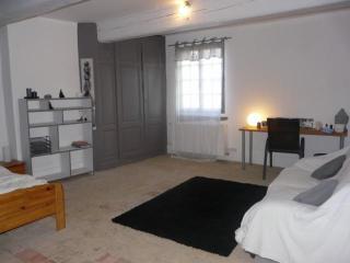 chambre dans une ancienne ferme - Cailloux-sur-Fontaines vacation rentals