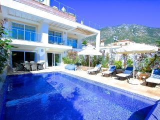 Ekin Apartment Sodor (2) - Kalkan vacation rentals