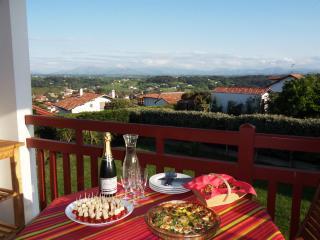 Terrasse avec vue, au calme, plage à pied à 350m - Bidart vacation rentals