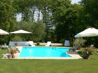 The house elves,nearby Rome, the lake, the sea - Manziana vacation rentals