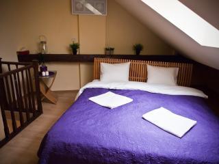 MAIN MARKET.,  LIGHT 2-room apart - Krakow vacation rentals