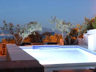LUXURY VILLA WITH POOL NEAR SEA - Slatine vacation rentals