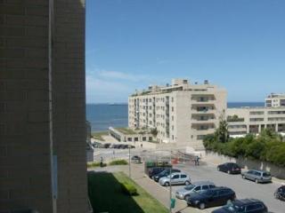 Near The City Of Oporto, On The Beach - Leca da Palmeira vacation rentals
