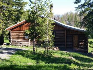 Beautiful Cabin with Deck and Internet Access - Dubois vacation rentals