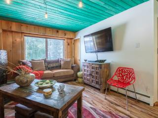 Nice Condo with Internet Access and Porch - Taos Ski Valley vacation rentals