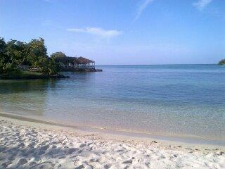 Starfish Paradise, Ocean view, Wifi, 7 mile beach - Negril vacation rentals