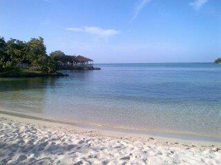 Starfish Paradise, Ocean view, Wifi, 7 mile beach - Image 1 - Negril - rentals