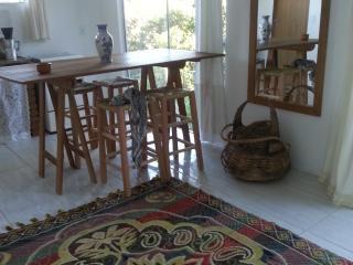 Casa num lindo morro - Florianopolis vacation rentals