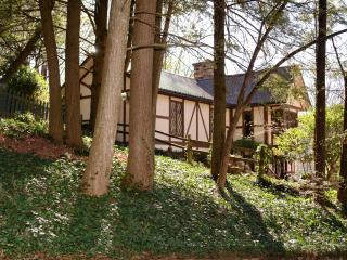 Tudor Inn Gatlinburg Bed and Breakfast-Duke's Room - Gatlinburg vacation rentals