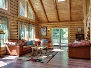 Quiet dog-friendly cabin with space for 10, private hot tub! - Welches vacation rentals