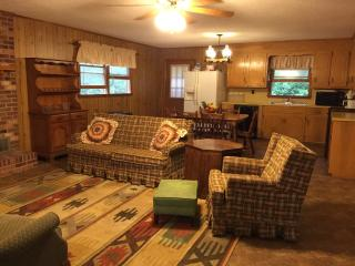 Lone Pine Blue Ridge Mountain Rental - Deep Gap vacation rentals
