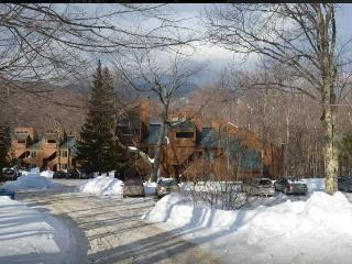 Sugarbush Mad River Ski Season Vacation Rental - Fayston vacation rentals