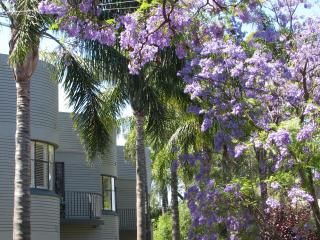 Perfect 2 bedroom Adelaide Apartment with Internet Access - Adelaide vacation rentals