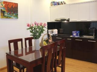 Modern apartment in heart of Hanoi 2 - Hanoi vacation rentals