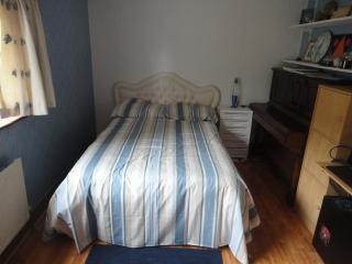 1 bedroom Private room with Internet Access in Mountshannon - Mountshannon vacation rentals
