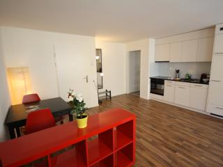 ZH Badenerstrasse V - HITrental Apartment Zurich - Prichovice vacation rentals