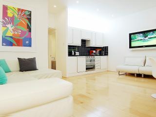 Luxury 5* Flat in Great Location (Sleeps 4) - London vacation rentals