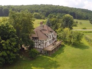 Spacious 5 bedroom Manor house in Hammondsport with Deck - Hammondsport vacation rentals