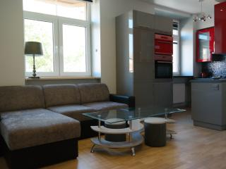 1 bedroom Condo with Internet Access in Siauliai - Siauliai vacation rentals