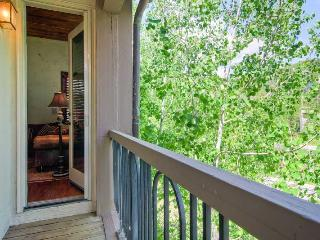 Perfect Condo with Elevator Access and Microwave - Beaver Creek vacation rentals