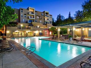 Spacious Luxury Apartment-Universal - Los Angeles vacation rentals