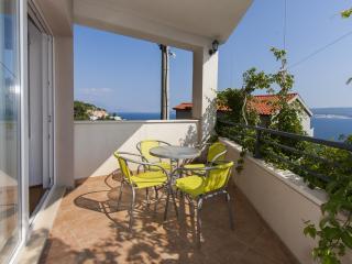 5647  A1(6) - Celina Zavode - Ruskamen vacation rentals