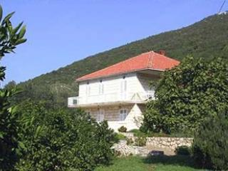 2 bedroom Condo with Balcony in Putnikovic - Putnikovic vacation rentals