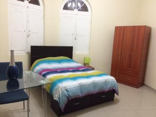 MIRAFLORES APT 1 Bedr/1 bath excellent location very comfortable &a fully equipp - Lima vacation rentals