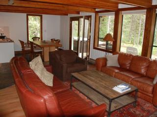 Cabin in the woods next to a lake near Whistler - Whistler vacation rentals