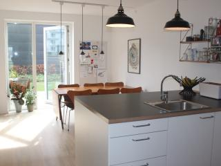 Central and kid frindly - Copenhagen vacation rentals