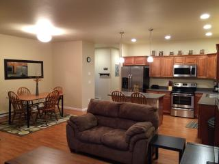 BRAND NEW 2 bedroom condo, conveniently located - Douglas vacation rentals