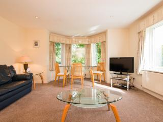Bright, Spacious 2 bed Apartment in Cheadle - Cheadle vacation rentals
