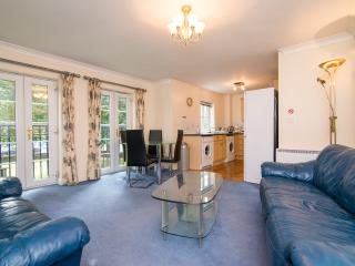 Great Two Bed Apartment at Parrs Wood, Didsbury - Greater Manchester vacation rentals