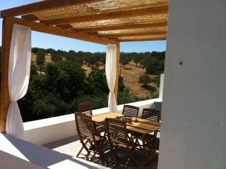 Holiday home in Alentejo countryside, Portugal - Estremoz vacation rentals