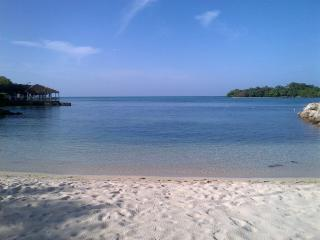 Azure agua, on the beach, ocean view, wifi - Negril vacation rentals