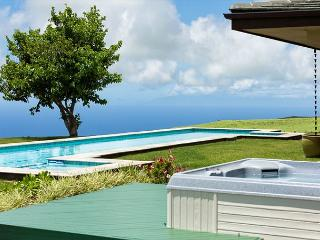 Hale Hokuloa - Brand new home with gorgeous ocean views! - Kamuela vacation rentals