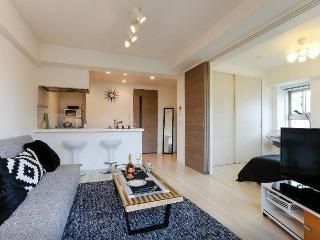 New!Top floor Shibuya luxury house! - Shibuya vacation rentals